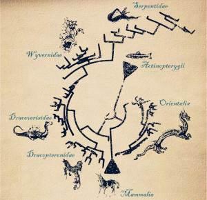 dragones evolución 1